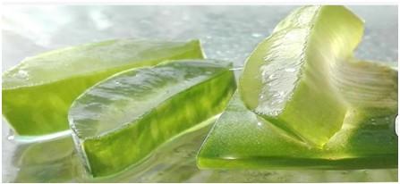 how to use aloe vera plant